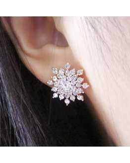 Hot Snow Flake Lovely Earrings